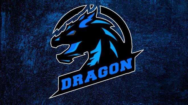 Турнир «The Dragon»